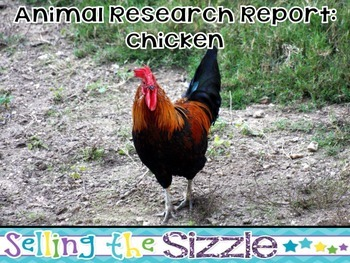 Animal Research Report- Chicken (Bird) A complete CCSS Aligned research unit