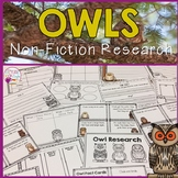 Owls-Animal Research Report