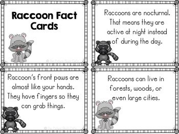 Raccoons-Animal Research Report