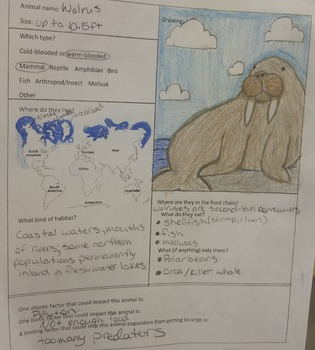 Animal Research Report and Gallery Walk