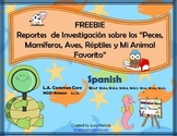 Free Animal Research Spanish FREEBIE Bilingual Stars Mrs Partida