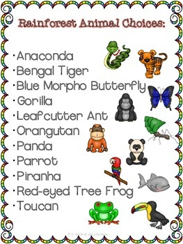 Animal Research Templates Rainforest Theme