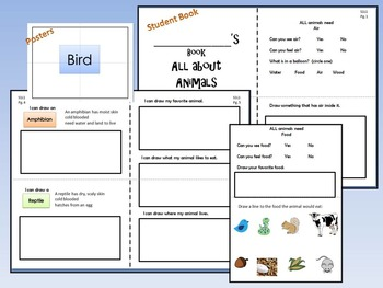Animal Riddles 1st grade science Book, Word Wall, Riddles