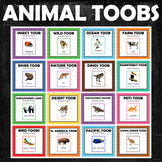 Animal Study Safari Toobs Activity Learning BUNDLE