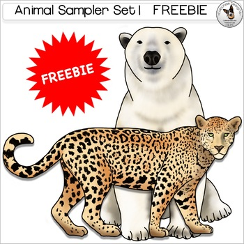Animal Realistic Clip Art Bird Insect Jaguar Kangaroo Polar Bear Toucan Zebra
