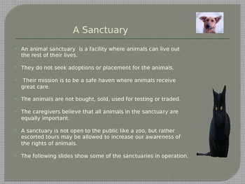Animal Sanctuaries