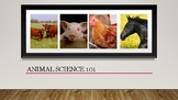 Animal Science Introduction PowerPoint