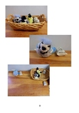 Montessori Animal Science Manual