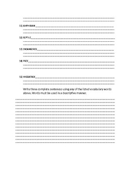 Animal Science worksheet/research activity