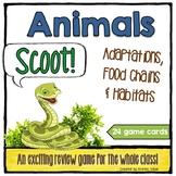 "Animal ""Scoot!"" - Adaptations, Food Chains & Habitats"