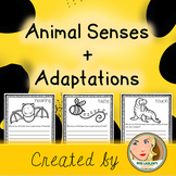 Animal Senses (Adaptations) - Infer and Research