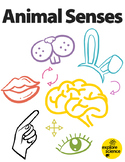Animal Senses: Classroom and On-Site Lessons (Ages 3-12, NGSS & CC)