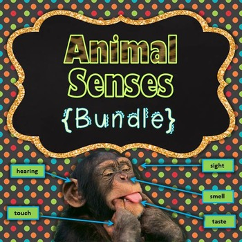 Animal Senses {Presentation & Guided Notes}