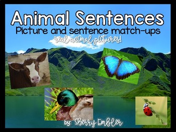 Animal Sentence Match Ups (with real pictures!)