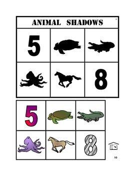 Animal Shadows