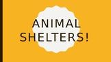 Animal Shelters