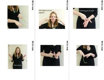 Animal Sign Language (ASL) Vocab Cards SUPERPACK
