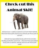 Animal Skit: unique body parts, adaptation, hibernation, m