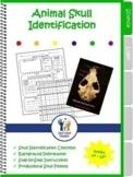 Animal Skull Identification Lab