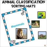 Animal classification kindergarten pre-k