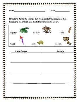 Animal Sort. Rainforest or Marsh