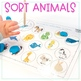 Animal Sort Smash Mats