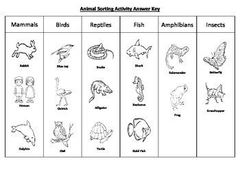 Animal Sorting Activity