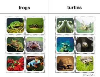 Animal Sorting Boards for Autism