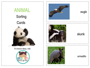 Animal Sorting Cards