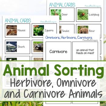 Animal Sorting Herbivore, Omnivore and Carnivore Animals