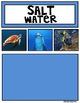 Fresh Water and Salt Water Sorting Mats