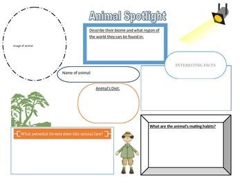 Animal Spotlight