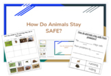 Animal Stay Safe- A 5 part packet