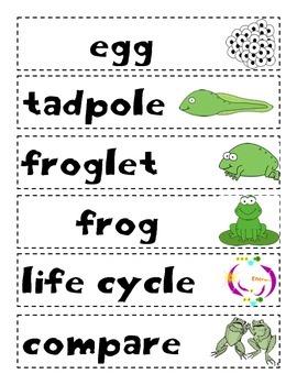 Animal Studies: Frogs Unit Plan