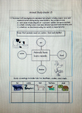 Animal Study Guide and Test