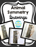 Animal Symmetry Drawing Activity