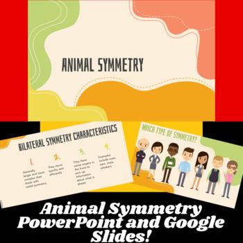Animal Symmetry PowerPoint