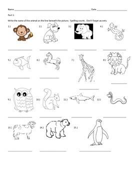 Animal Test - Spanish