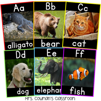 Animal Themed Alphabet Posters: Real-Life Photos (A to Z)