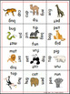 Zoo Animal Literacy Activities