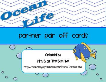 Partner Pair Off Cards Animal Themed BUNDLE