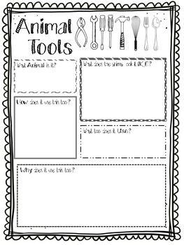 Animal Tools Writing Prompt