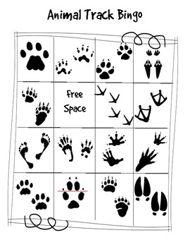 picture about Printable Animal Tracks identified as Animal Observe Bingo