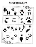 Animal Track Bingo