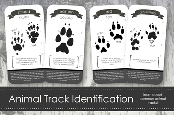 Animal Track Identification Cards- Montessori Inspired