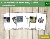 Animal Tracks - Photographs & Foot Prints