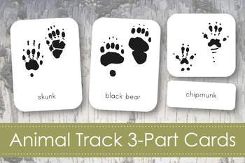 Animal Tracks 3-Part Nomenclature Cards- Montessori