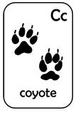 Animal Tracks Alphabet