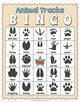 Animal Tracks BINGO Game