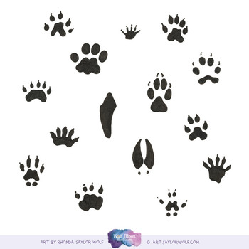 Animal Tracks Clipart - Footprints in the Woods